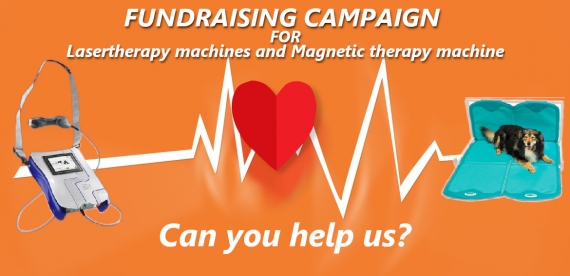 Fundraising Campaign for Lasertherapy Machines And Magnetic Therapy Machine